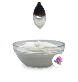 Lüttje Seep Bio Lavendel & Geranie Hand- & Körperlotion