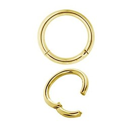 Gold Plated Segment Ring - Basic (1.6mm)