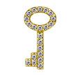 Segment Ring Charm - Zirconia Key