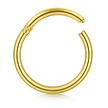 14 Karaat Massief Gouden Ring  (1mm)