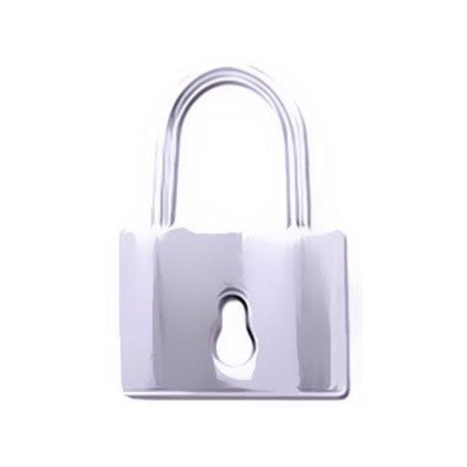 Genital Piercing Lock Surgical Steel Piercings Works