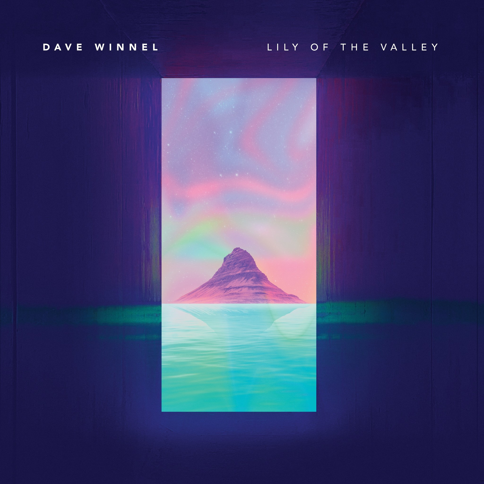 Dave Winnel - Lily Of The Valley (The Journey) (VINYL)