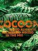 Cocoon Ibiza 2013
