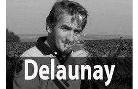 Domaine Joel Delaunay