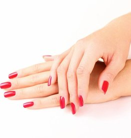 Training Gel Polish & Manicure  €295,00