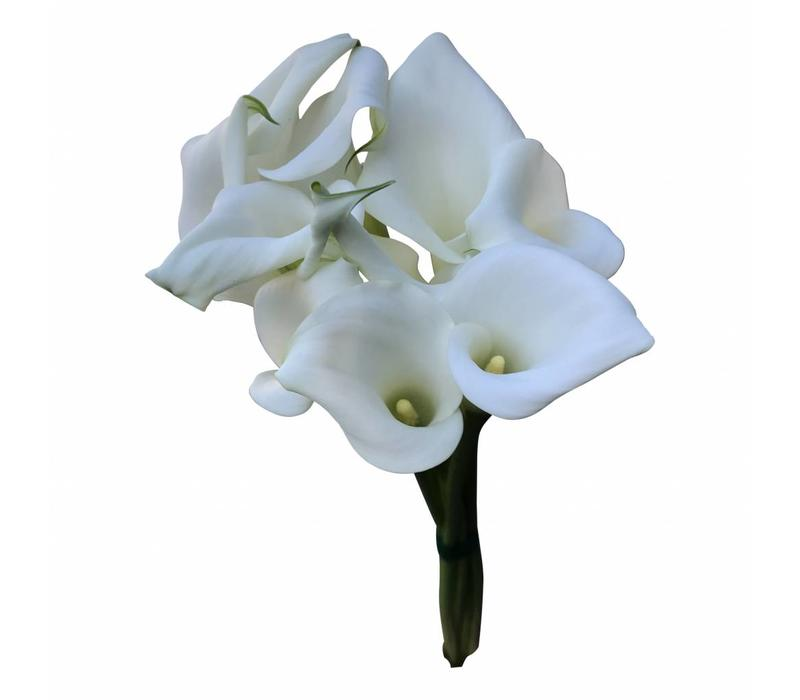 10 Calla Crystal Blush (Weiß)