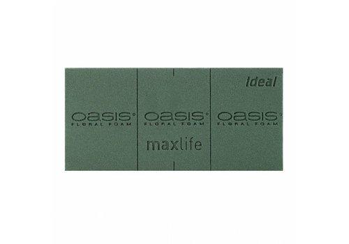 OASIS® IDEAL Frischblumen-Steckschaum