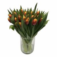 10 Tulpen Dow Jones (Orange-Gelb)