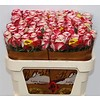 10 Premium-Rosen Adv. Sweetness  (Rosa Weiß)