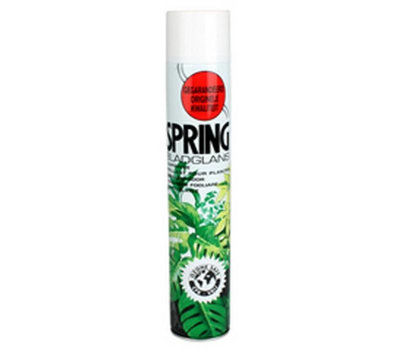 Spring Blattglanzspray 750ml