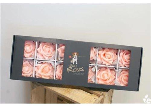 12 Wachsrosen Sensations im Karton (zart rosa)