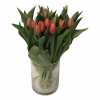 10 Tulpen  Ad Rem