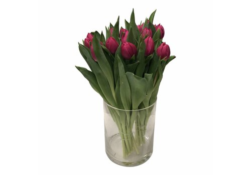 10 Tulpen Queen of Marve