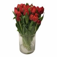 10 Tulpen Escape