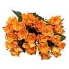 100 Rosen Orange Marie Claire