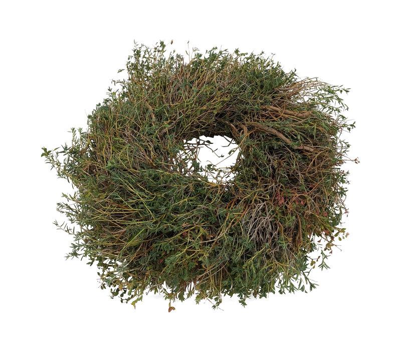 Zierkranz Euphorbia Spinosa  Ø  ca.25-30cm