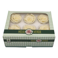 6 Konservierte Rosen Creme
