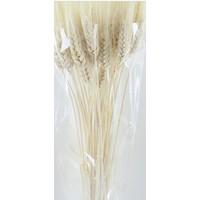 Weizen getrocknet und gebleicht pro Bund  - Copy