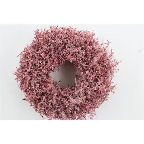 Dekokranz aus Asparagus (Rot)