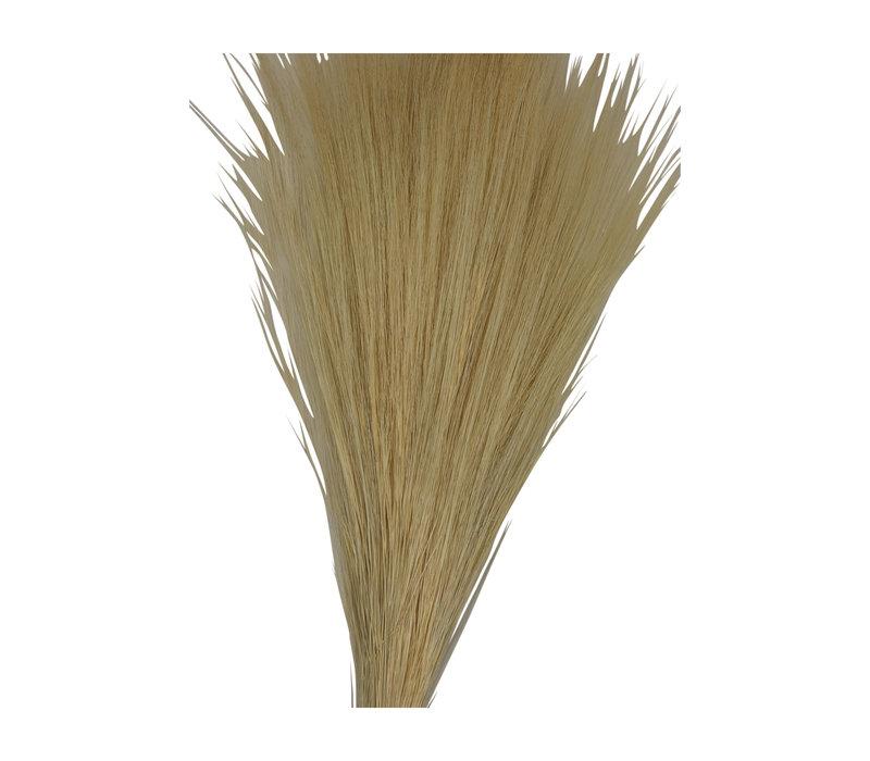 Gräser getrocknet und gebleicht pro Bund