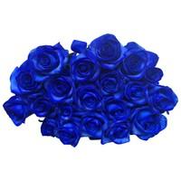 Rosen Blau