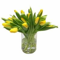 10 Tulpen Agrass Gold