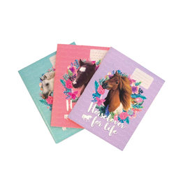 3 x Schriften Horselover for life