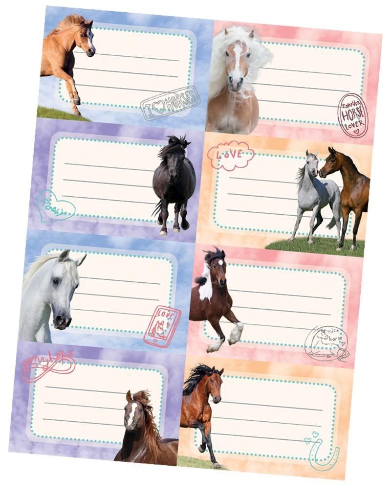 Penny - 24 Paarden-etiketten