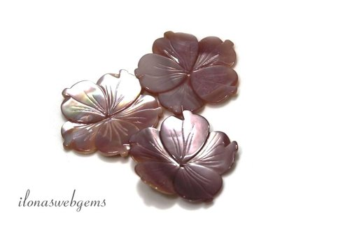 Pink Shell Perle rund ca. 29mm