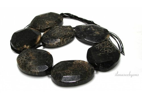 Fossil beads facet around 52.5x41x11mm