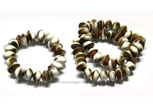 Shiva Shell bracelet approx. 15mm