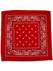 handkerchief (3 colors)