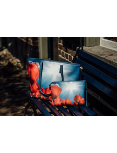 Celdes Bagset Red tulips in the sun (two bags)
