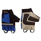 RevaraSports handschoen Blauw