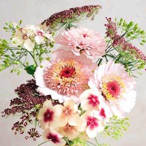 Jora Dahl Wild Bouquets Pink Caramel Samen