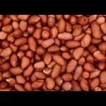 Cacahuetes orgánicos crudo