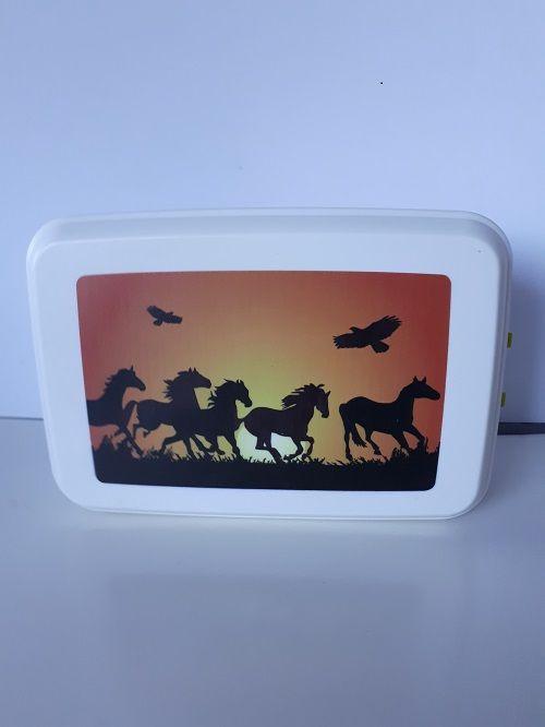Biodora Lunchbox groß aus biologischem Kunststoff Pferdemotiv