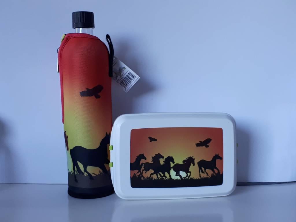 Biodora Lunchbox  & Trinkflasche im Sparset -Pferde