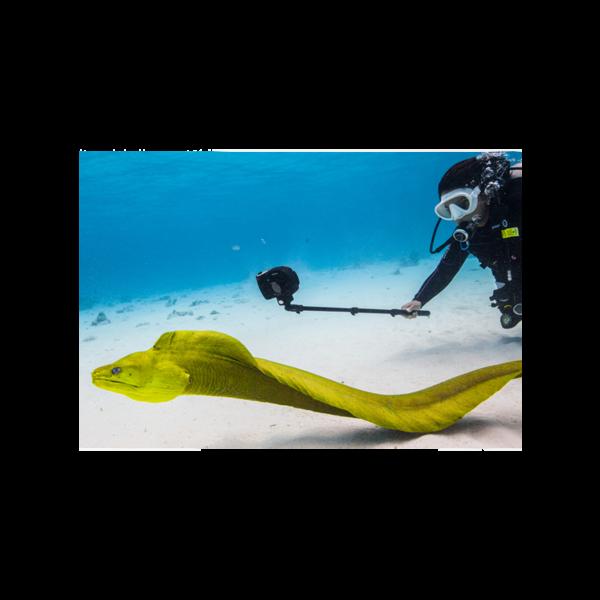 Aquapod Mini