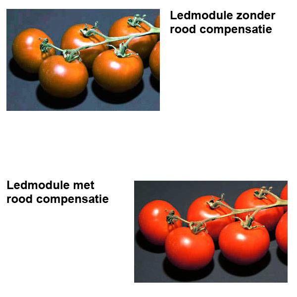 Led-R Reflector Module Maxi Compact LCD
