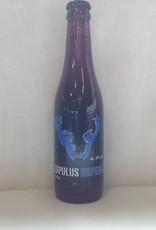 LUPULUS HOPERA 33 CL
