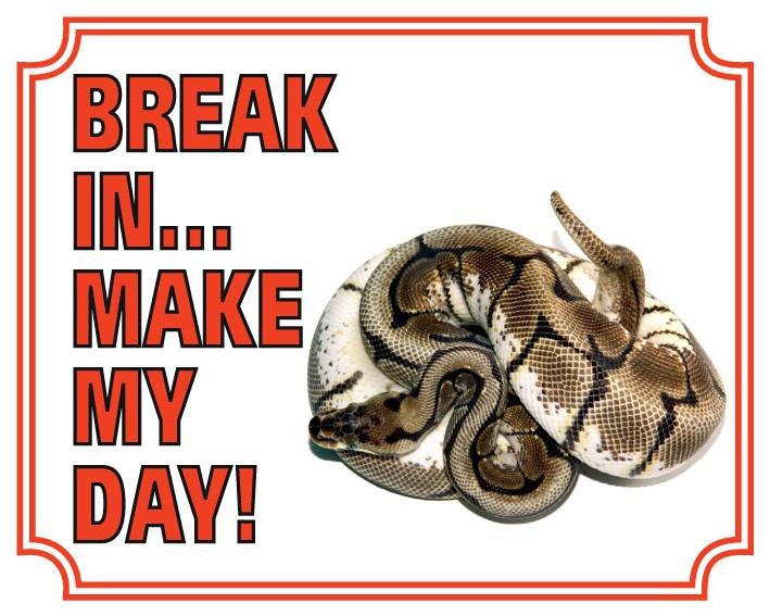 Konings Python Waakbord Break in make my Day
