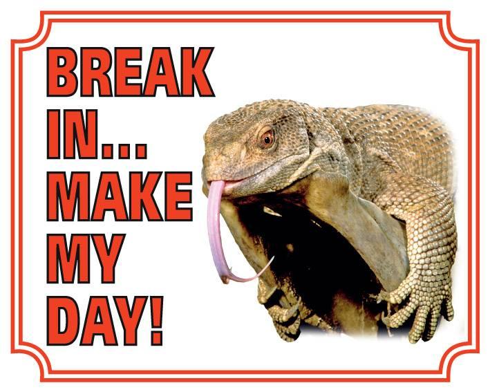Hagedis Waakbord - Break in make my day