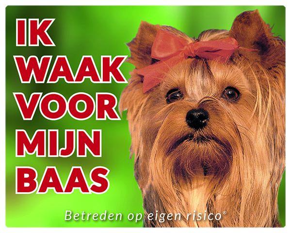Yorkshire Terrier Waakbord - Ik waak voor mijn baas