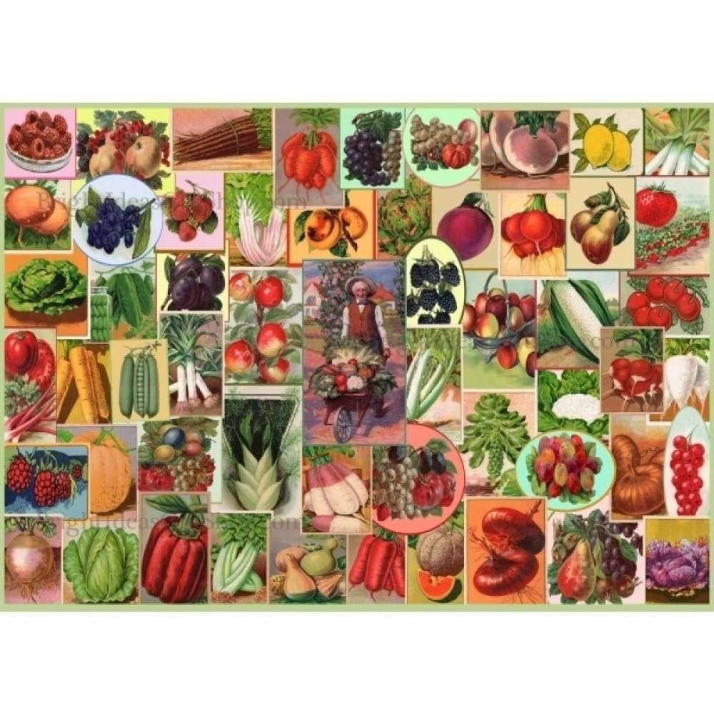 Five a Day Puzzel 250 Stukjes XL
