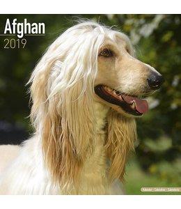 Avonside Afghaanse Windhond Kalender 2019