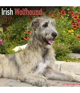 Avonside Ierse Wolfshond Kalender 2019