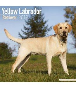 Avonside Labrador Retriever Blond Kalender 2019