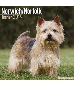 Avonside Norwich en Norfolk Terrier Kalender 2019