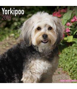 Avonside Yorkipoo Kalender 2019